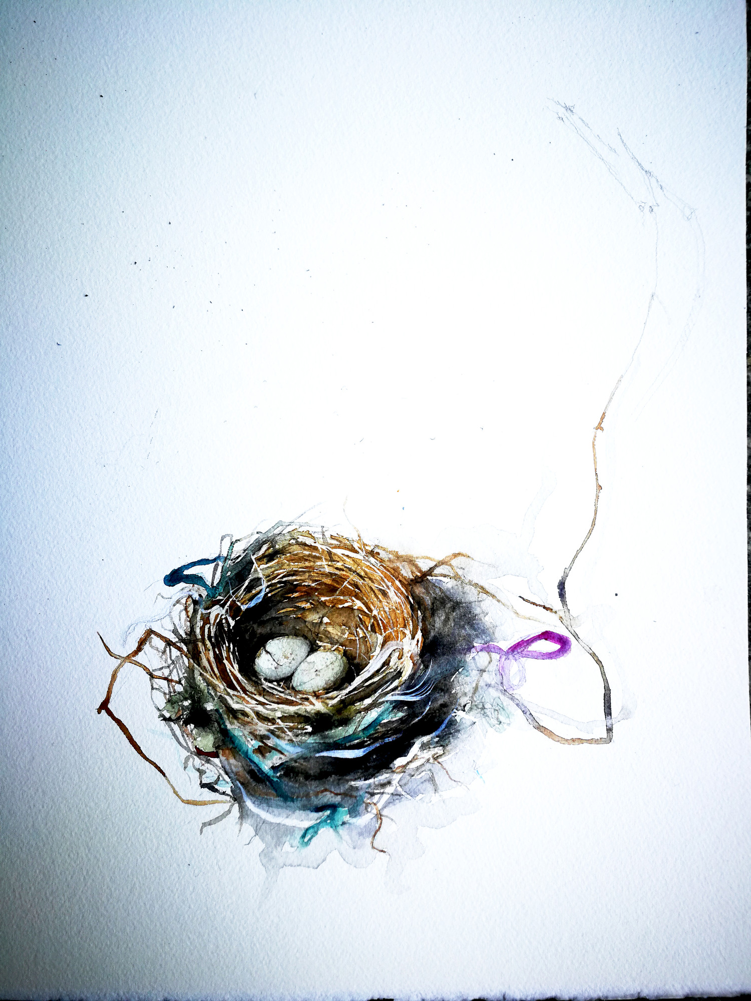 nest with ribbons